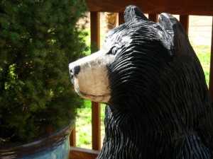 Chainsaw Bear, Lucinda, profile