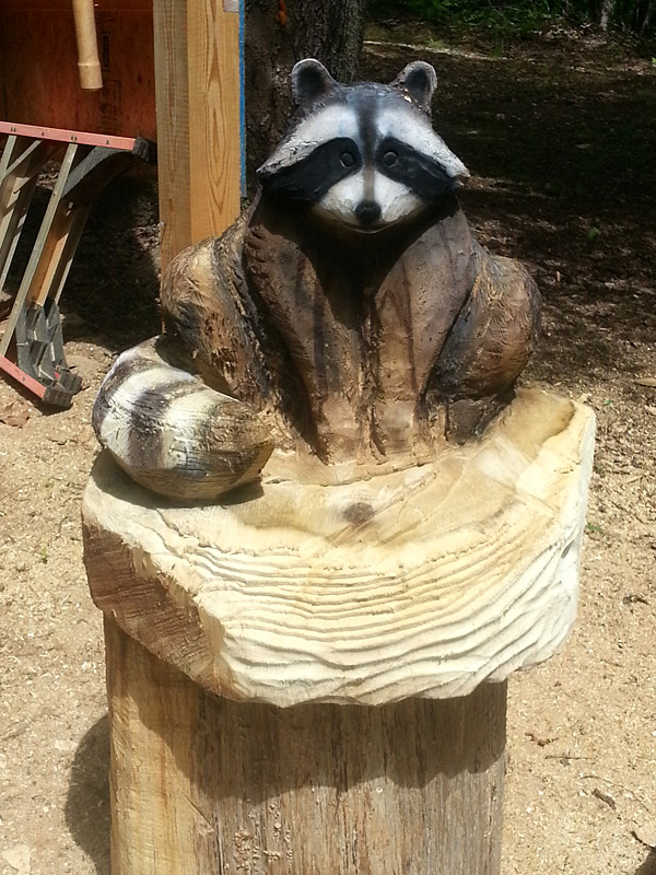 Raccoon carving in progress u2013 sleepy hollow art