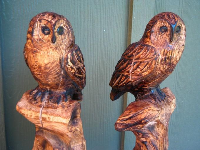 Birds sleepy hollow art