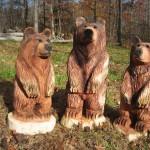 Cedar Bear Cubs