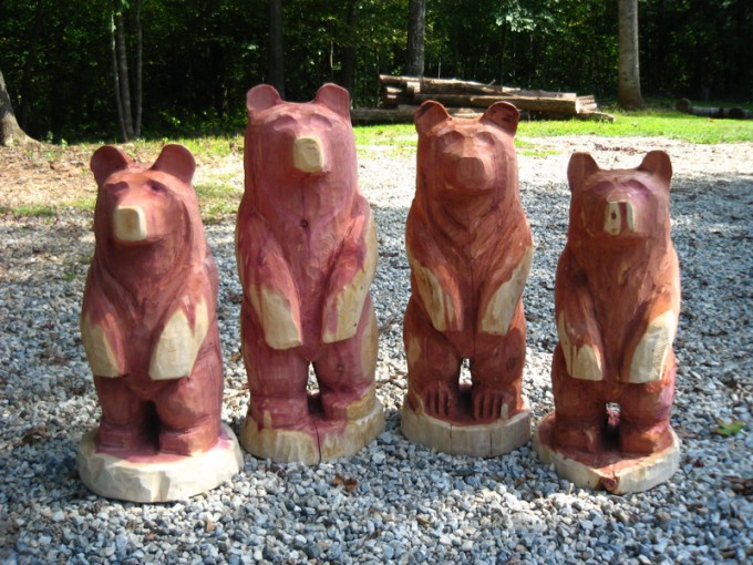 Cedar wood bear cubs