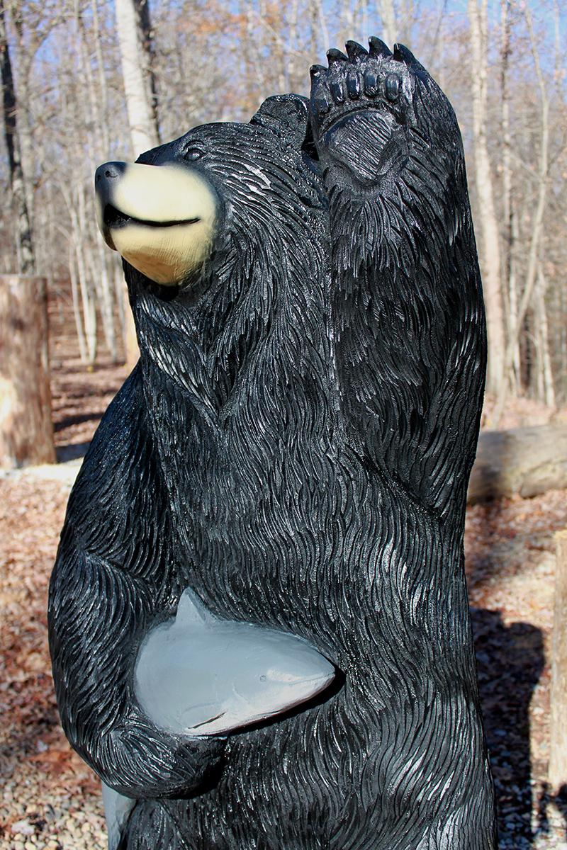 Bears, group 4